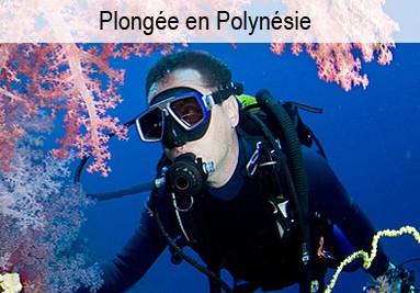 Plonger en Polynésie Française
